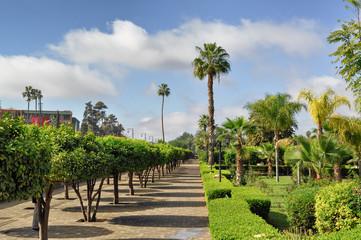 Giardino marocchino