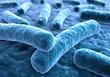 Leinwanddruck Bild Legionellen