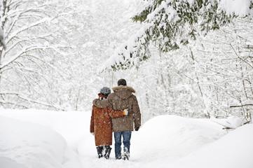 Österreich, Salzburger Land, Altenmarkt, Paar in schneebedeckter Landschaft, Rückansicht