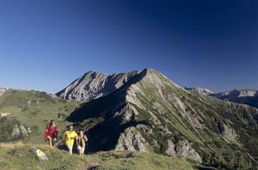 Österreich, Salzburger Land, drei Menschen wandern durch Alpen