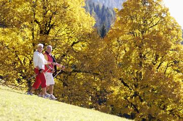 Älteres Paar, Nordic Walking, Seitenansicht, Portrait
