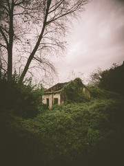 Abandoned house in nature