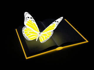 butterfly on a book