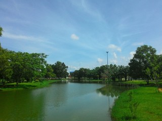 lagoon in the park