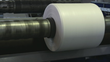 Paper roll for a printing press