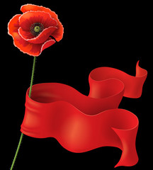 Poppy and red ribbon