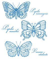 Blue Butterflies Watercolor Contour Drawing Imitation