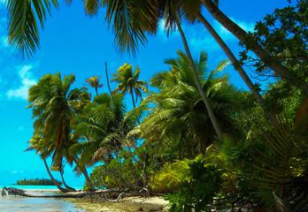 Lagon bleu, Tahiti, plage.