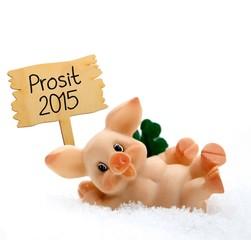 Schweinchen Glückwunsch Silvester 2015
