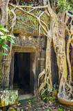 Ta Prohm Temple in Angkor Wat, Tomb Raider Temple, Cambodia