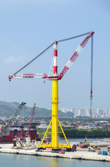 The cargo crane