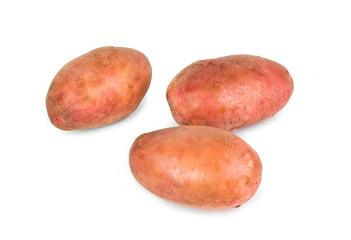 Red Potato tubers on white background