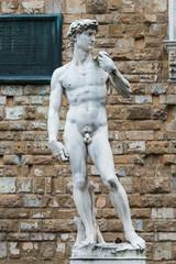 Copy of Michelangelo's David, Piazza della Signoria, Florence