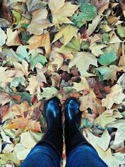 Stivali di gomma e foglie secche