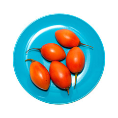 tree tomatoes isolated