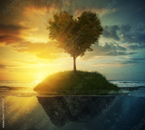 Tree heart in ocean - 74055336