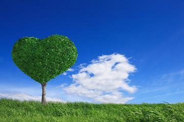 草原とハートの木