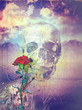 Skull and flowers in the valley