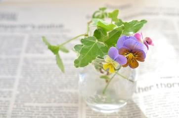 ビオラの花あしらい