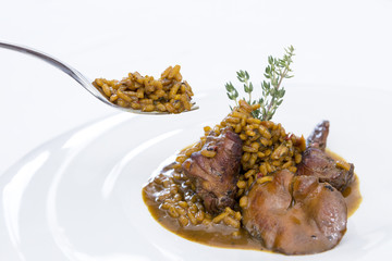 fork and rice with rabbit