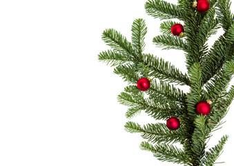Small red glass balls on fir branch