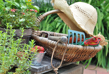 outils de jardin dans un panier