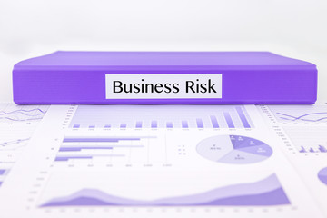 Business risk report with graph analysis