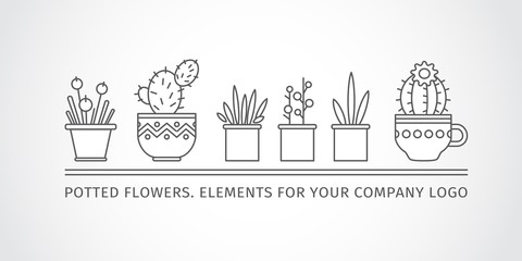 linear design, potted flowers. elements of logo.