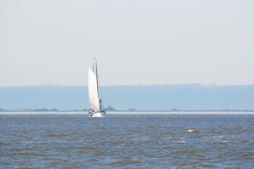 Clipper on Dutch wadden sea