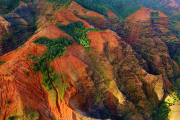 Stunning view into Waimea Canyon
