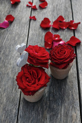 Red roses in ceramic vases on rustic wooden table