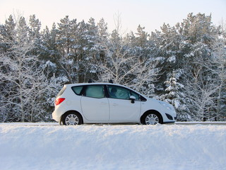 White car in the background of the snow forestr Siberian, Omsk r
