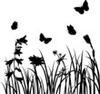 Silhouettes  of flowers and butterflies - 74067565