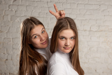 twin sisters portret