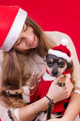 Christmas portrait with cute dog