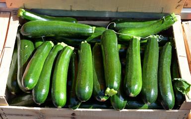 Zucchini auf dem Wochenmarkt in der Provence