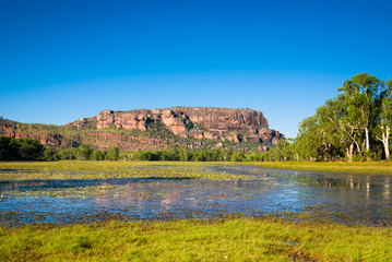 Anbangbang Billabong and Nourlangie Rock, Kakadu, Australia