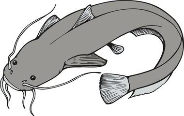 Fish06EG2