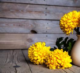 Flowers. Beautiful yellow chrysanthemum in a vase