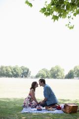 Couple having picnic in park