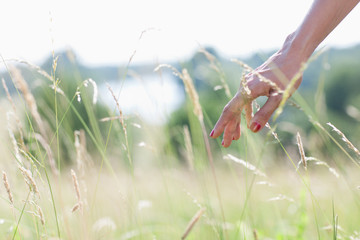 Woman touching tall grass