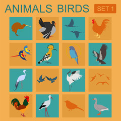 Birds icon set. Vector flat style. Vector illustration