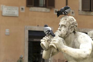 tritone con piccioni