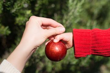 クリスマスツリーの飾りを手渡す親子