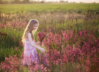 beautiful girl with pink flowers on meadow