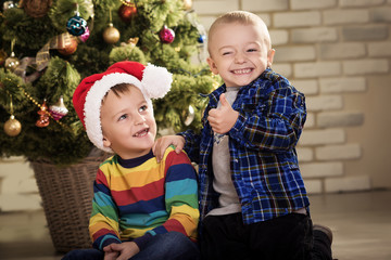 Little boys near a Christmas tree. Children in cap of Santa