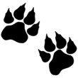 Vector image of paws.