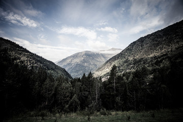 Forested valleys between the mountains. andorra