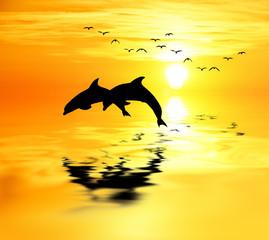 delfines saltando en el mar dorado por el sol