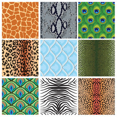 set of seamless textures of animal skins,